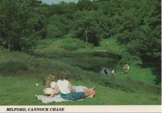 cannock-chase_12