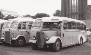 50 Left Leyland Right AEC