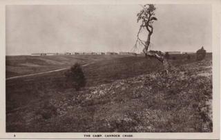 cannock-chase-camp_3